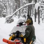 012-DSCN4768-Mel-Holliway-Treetop-in-Trail-0151