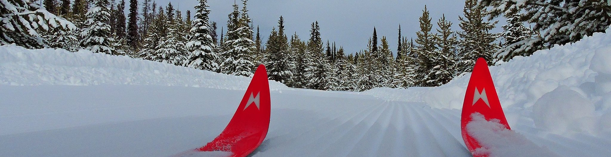 banner image - skis on groomed trail